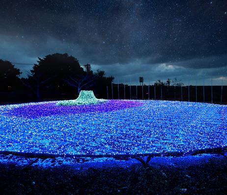[별이 빛나는 밤] 제주 불빛 정원